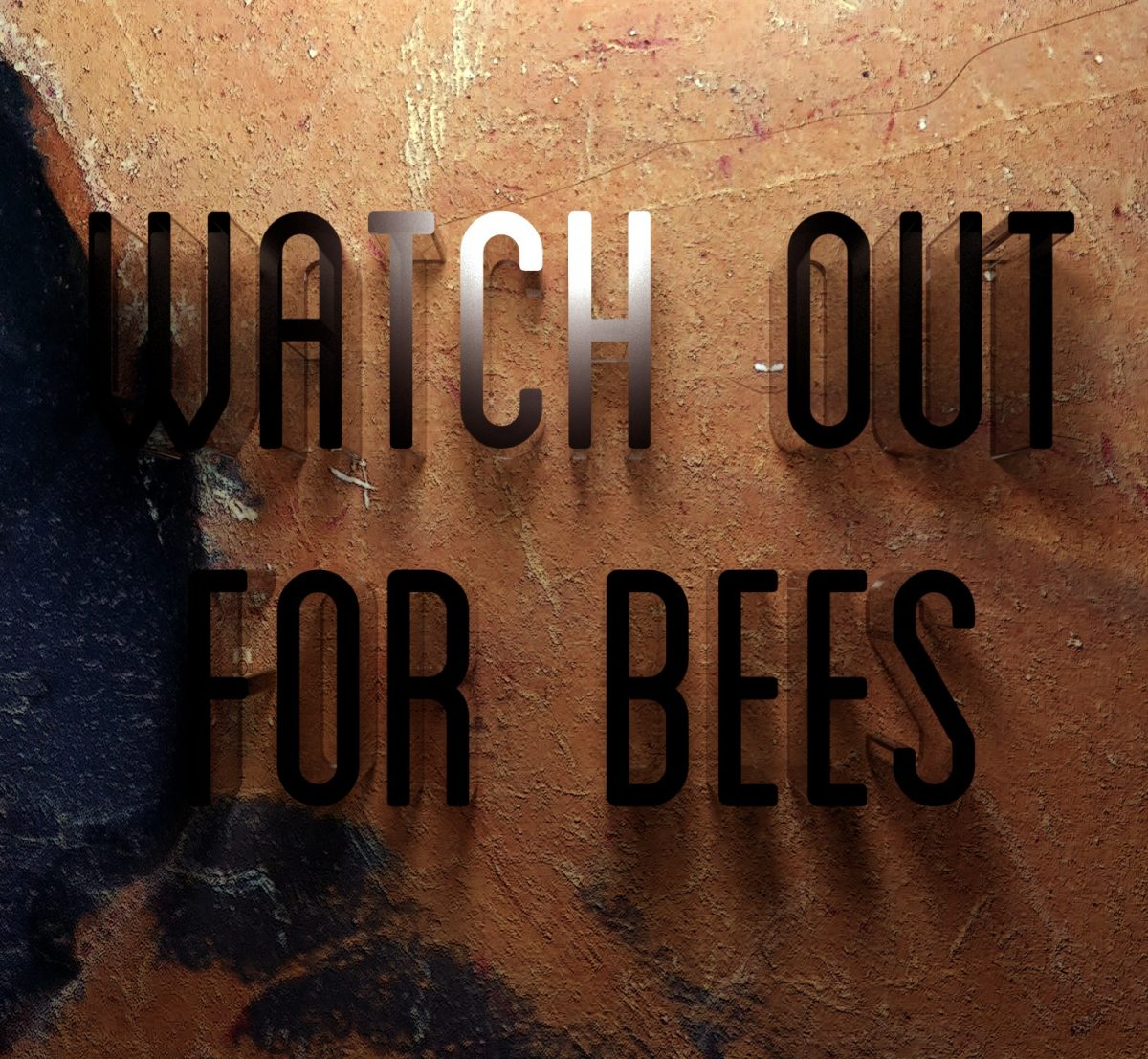 Watch Out For Bees